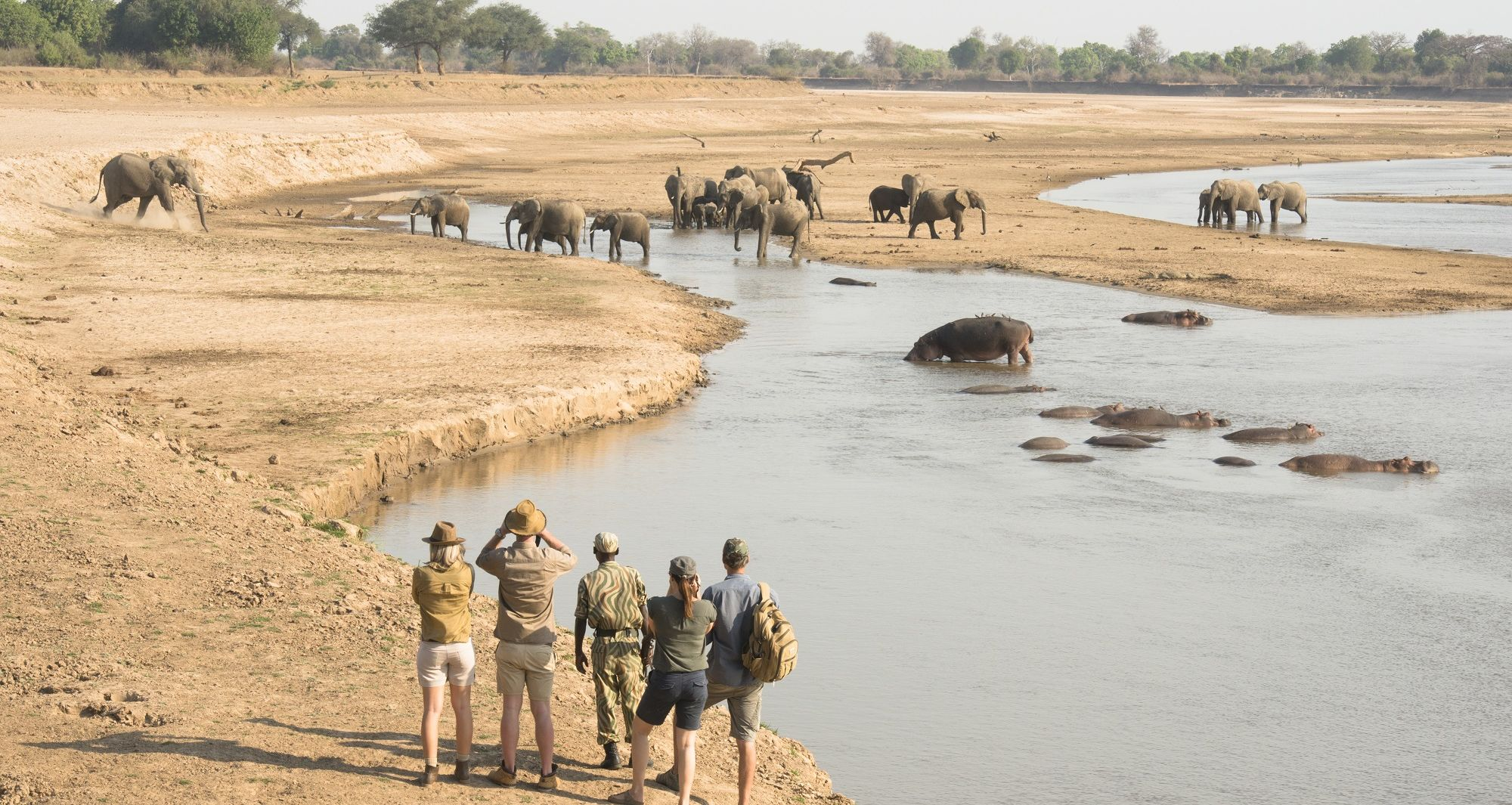 Walking Safari in South Luangwa with Shenton Safaris