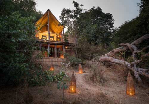 Remote Africa - Chikoko Tree Camp