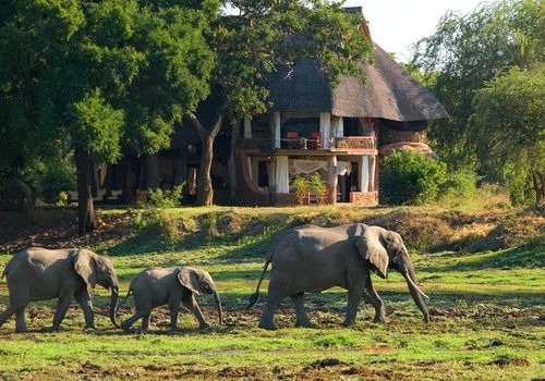 Robin Pope Safaris - Luangwa Safari House