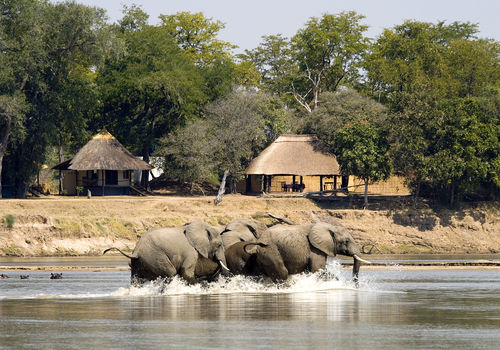 Robin Pope Safaris - Nsefu Camp