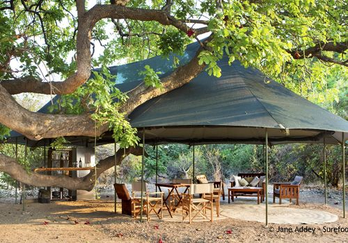 Surefoot Safaris - Mapazi Camp