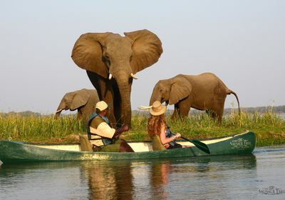 Canoe Safari